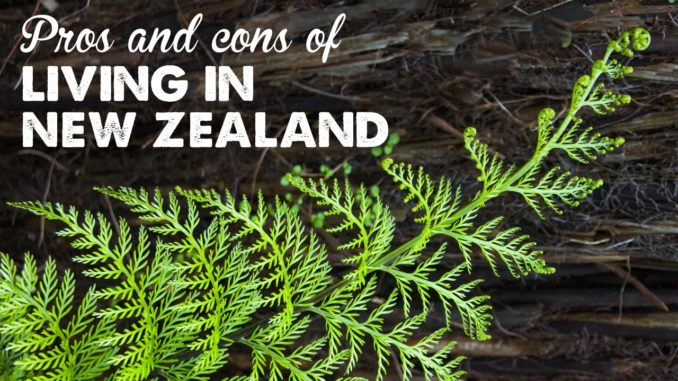 Pros & Cons of Living in New Zealand | A Thousand Words