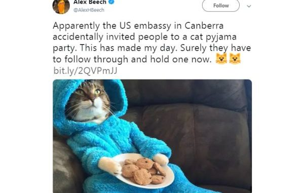 U.S. Embassy wins Twitter users' hearts with 'cat pajama jam' invite | Articles