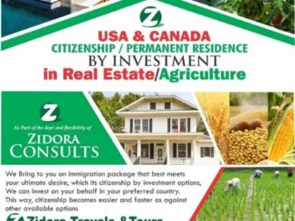 USA/Canadian Citizenship by investment - Daily Post Nigeria