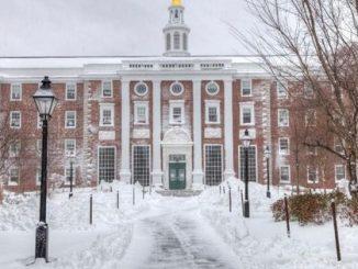 New International Student Enrollment In U.S. Has Fallen 10% Since 2015