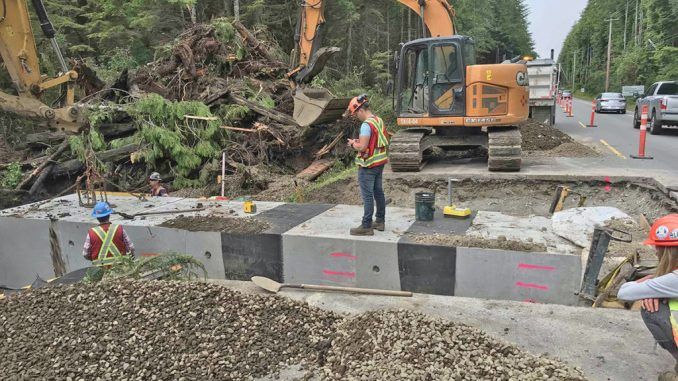 West Coast of Vancouver Island hops to it to help frogs migrate under highway – Vancouver Island Free Daily
