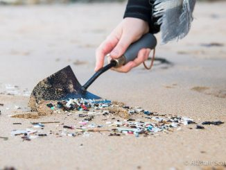 Portsmouth communities work together to tackle plastic pollution